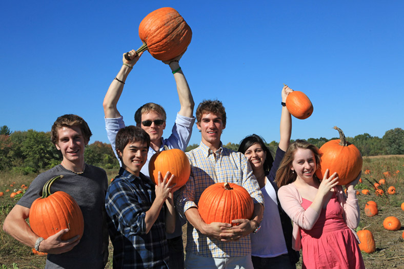 Pumpkin Picking at Griegs Farm